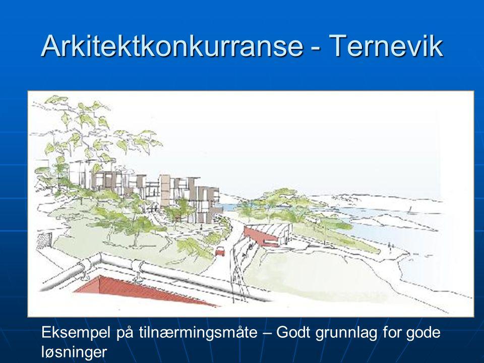 Eksempel på tilnærmingsmåte – Godt grunnlag for gode løsninger Arkitektkonkurranse - Ternevik