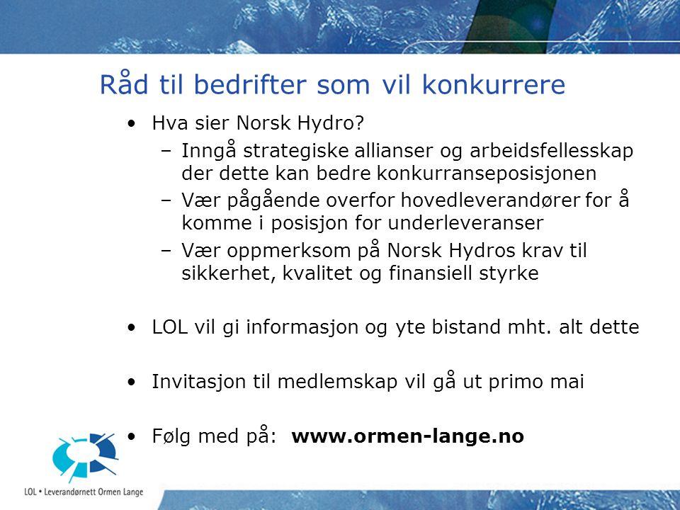 Råd til bedrifter som vil konkurrere Hva sier Norsk Hydro? –Inngå strategiske allianser og arbeidsfellesskap der dette kan bedre konkurranseposisjonen
