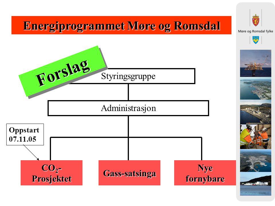 Energiprogrammet Møre og Romsdal Styringsgruppe Administrasjon CO 2 - Prosjektet Oppstart 07.11.05 Nye fornybare Gass-satsinga ForslagForslag