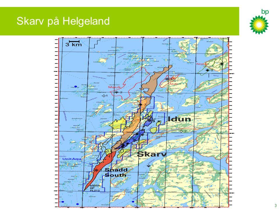3 Skarv på Helgeland