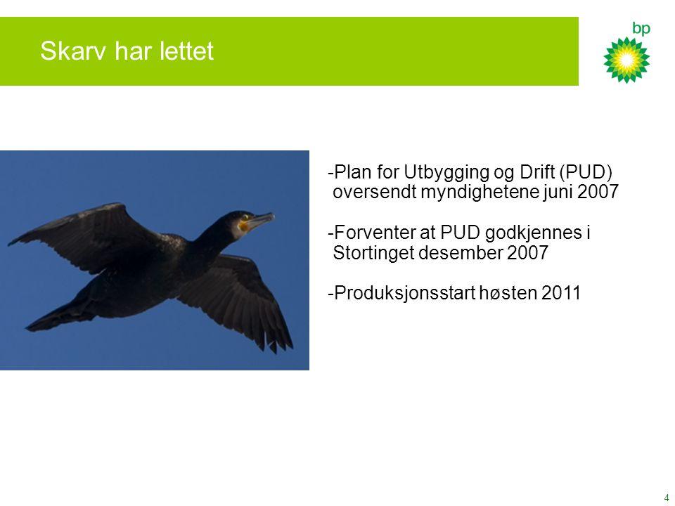 4 Skarv har lettet -Plan for Utbygging og Drift (PUD) oversendt myndighetene juni 2007 -Forventer at PUD godkjennes i Stortinget desember 2007 -Produk