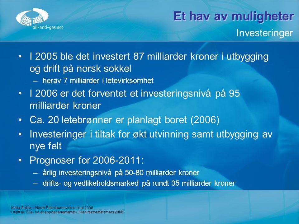 Et hav av muligheter I 2005 ble det investert 87 milliarder kroner i utbygging og drift på norsk sokkel –h–herav 7 milliarder i letevirksomhet I 2006
