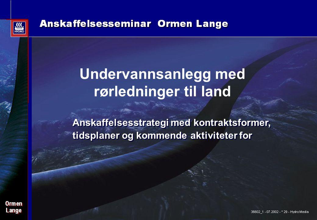 Date: 2003-02-02 - Page: 13 Anskaffelsesstrategi med kontraktsformer, tidsplaner og kommende aktiviteter for Undervannsanlegg med rørledninger til land