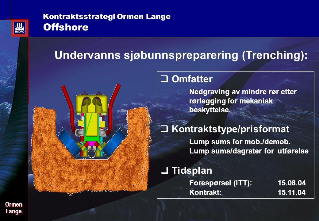 Date: 2003-02-02 - Page: 17 OrmenLangeOrmenLange Kontraktsstrategi Ormen Lange Offshore Undervanns sjøbunnspreparering (Trenching):  Omfatter Nedgraving av mindre rør etter rørlegging for mekanisk beskyttelse.