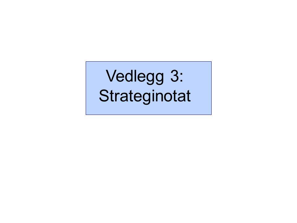 Vedlegg 3: Strateginotat