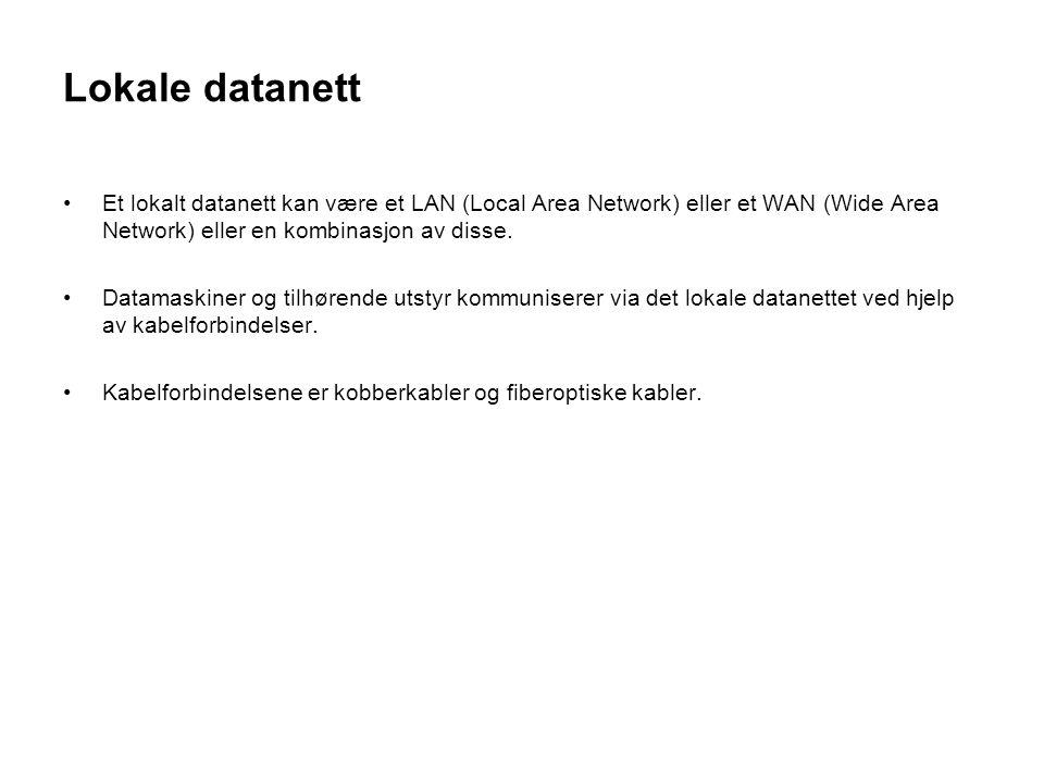 Lokale datanett Et lokalt datanett kan være et LAN (Local Area Network) eller et WAN (Wide Area Network) eller en kombinasjon av disse. Datamaskiner o