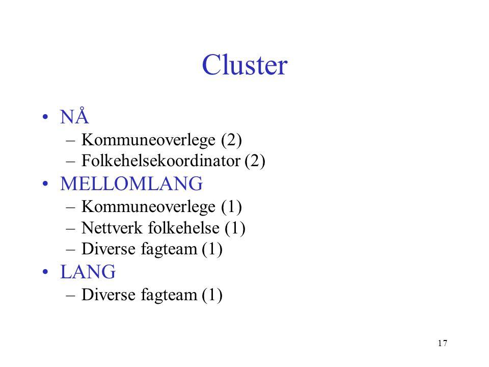 Cluster NÅ –Kommuneoverlege (2) –Folkehelsekoordinator (2) MELLOMLANG –Kommuneoverlege (1) –Nettverk folkehelse (1) –Diverse fagteam (1) LANG –Diverse fagteam (1) 17