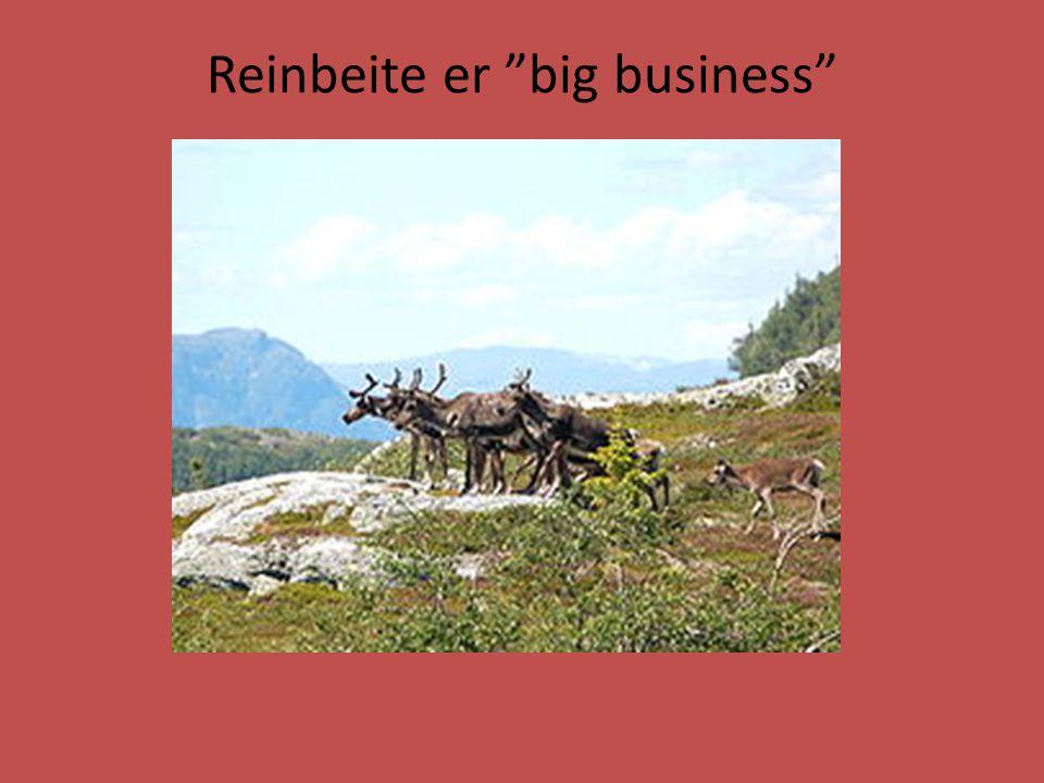 """Reinbeite er """"big business"""""""