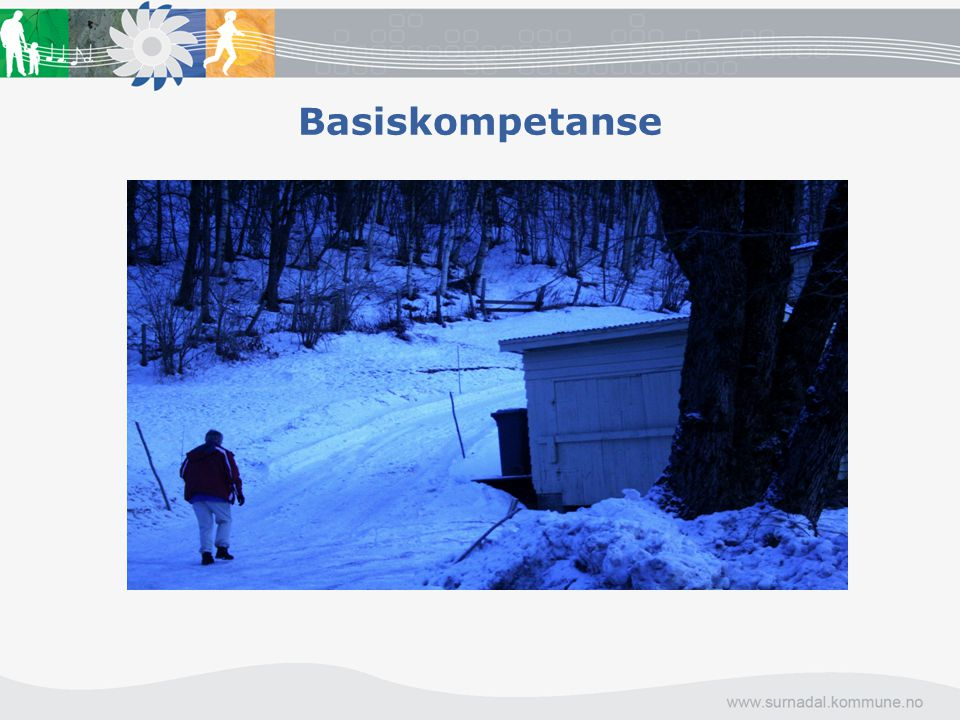 Basiskompetanse