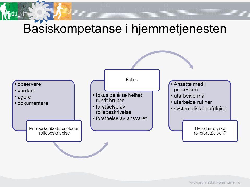 Basiskompetanse i hjemmetjenesten observere vurdere agere dokumentere Primærkontakt/soneleder -rollebeskrivelse fokus på å se helhet rundt bruker fors