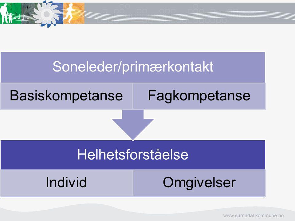 Helhetsforståelse IndividOmgivelser Soneleder/primærkontakt BasiskompetanseFagkompetanse