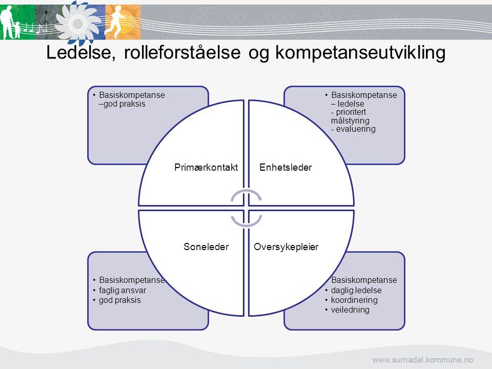 Ledelse, rolleforståelse og kompetanseutvikling Basiskompetanse daglig ledelse koordinering veiledning Basiskompetanse faglig ansvar god praksis Basis