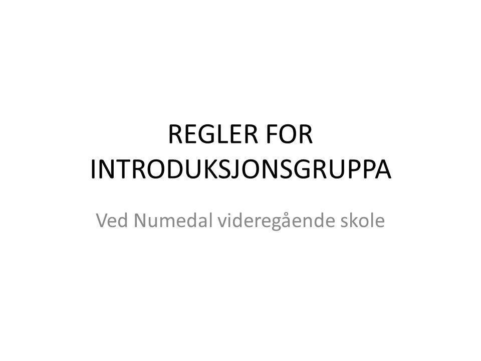 REGLER FOR INTRODUKSJONSGRUPPA Ved Numedal videregående skole