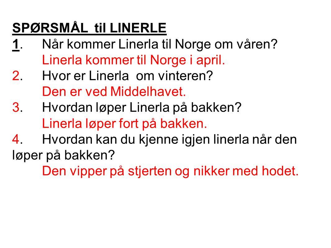 SPØRSMÅL til LINERLE 1.Når kommer Linerla til Norge om våren? Linerla kommer til Norge i april. 2.Hvor er Linerla om vinteren? Den er ved Middelhavet.
