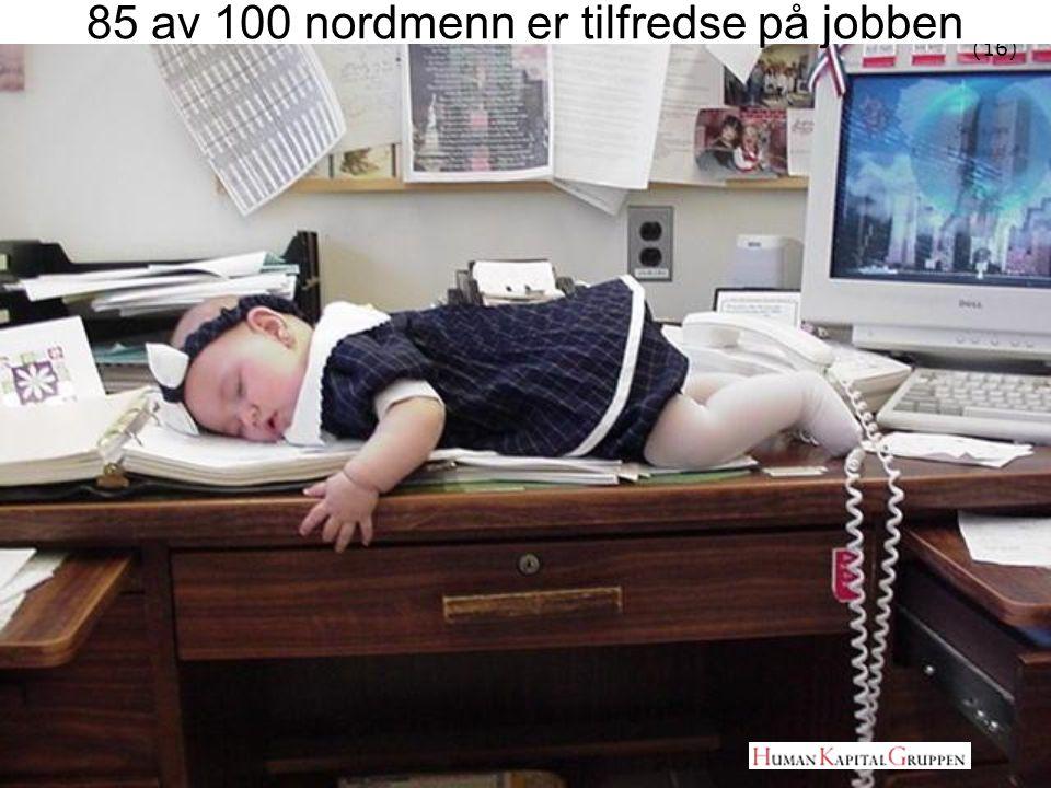 (16) 85 av 100 nordmenn er tilfredse på jobben
