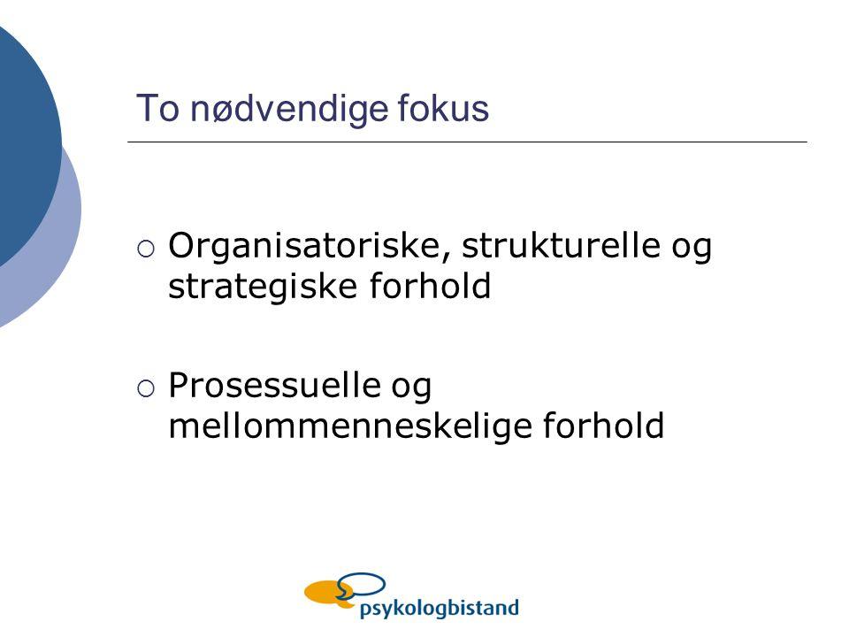 To nødvendige fokus  Organisatoriske, strukturelle og strategiske forhold  Prosessuelle og mellommenneskelige forhold