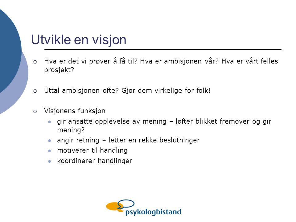 Utvikle en visjon  Hva er det vi prøver å få til.