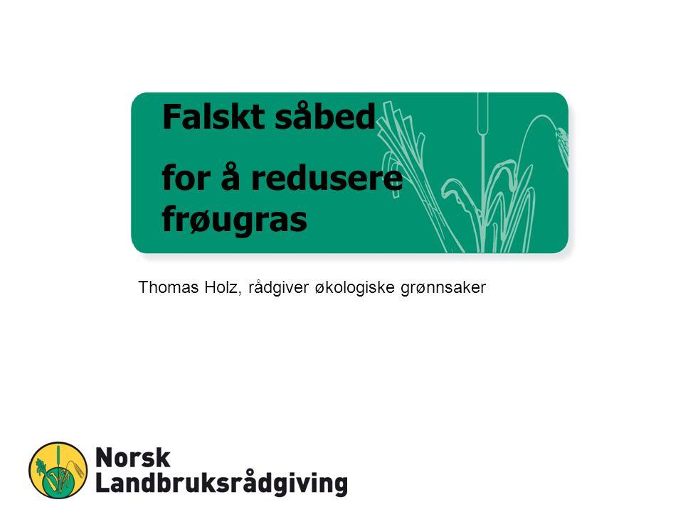 Falskt såbed for å redusere frøugras Thomas Holz, rådgiver økologiske grønnsaker