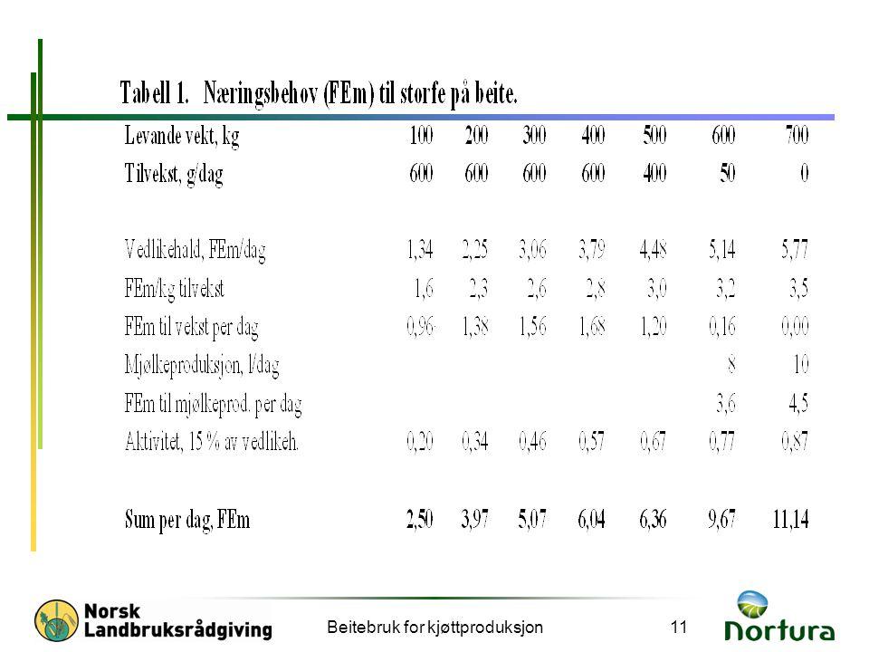 Beitebruk for kjøttproduksjon11