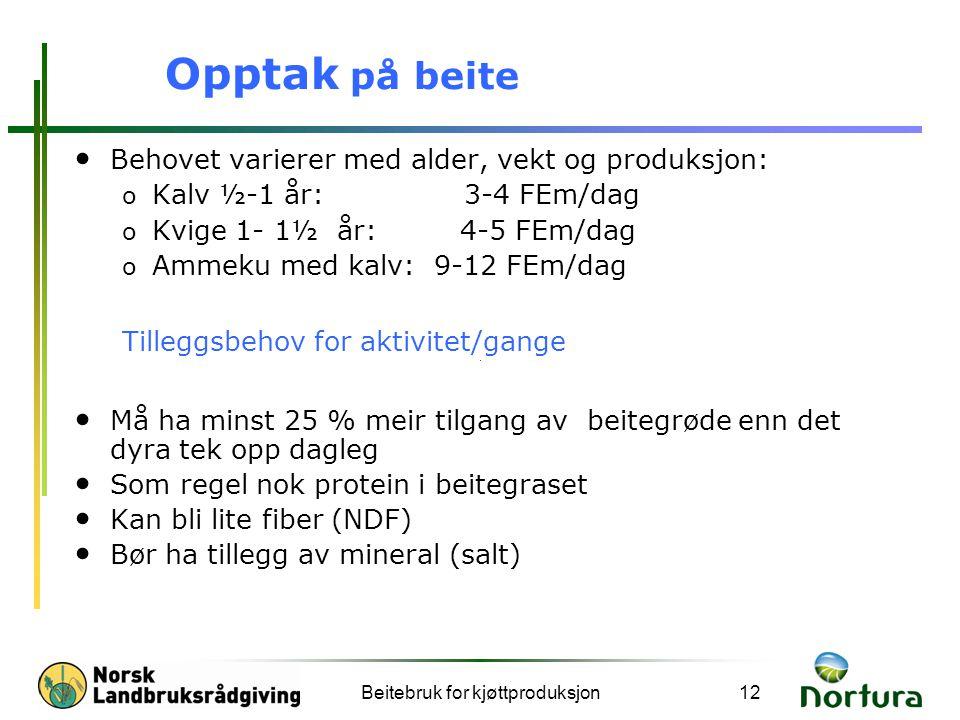 Beitebruk for kjøttproduksjon12 Opptak på beite Behovet varierer med alder, vekt og produksjon: o Kalv ½-1 år: 3-4 FEm/dag o Kvige 1- 1½ år: 4-5 FEm/d