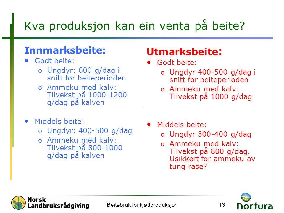 Beitebruk for kjøttproduksjon13 Kva produksjon kan ein venta på beite? Innmarksbeite: Godt beite: o Ungdyr: 600 g/dag i snitt for beiteperioden o Amme