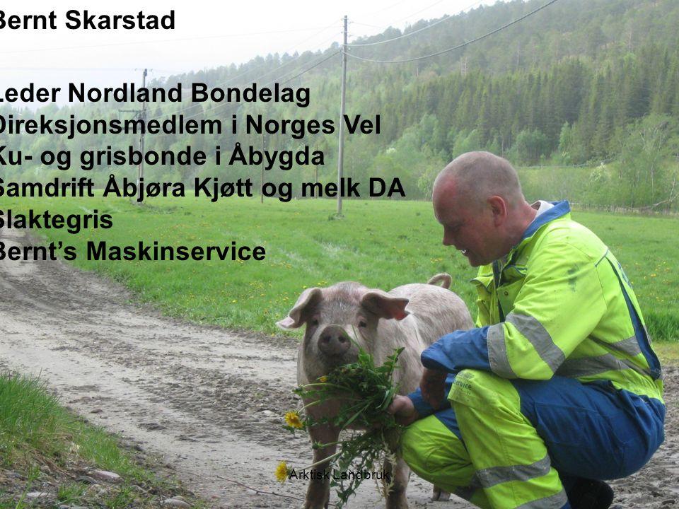 Leder Nordland Bondelag Direksjonsmedlem i Norges Vel Ku- og grisbonde i Åbygda Samdrift Åbjøra Kjøtt og melk DA Slaktegris Bernt's Maskinservice Arkt