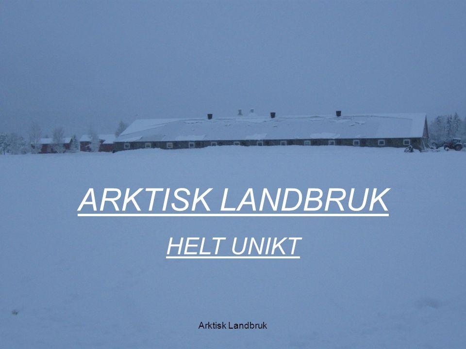 Arktisk landbruk Mål Gi det multifungsjonelle Arktiske landbruket en ny gnist.