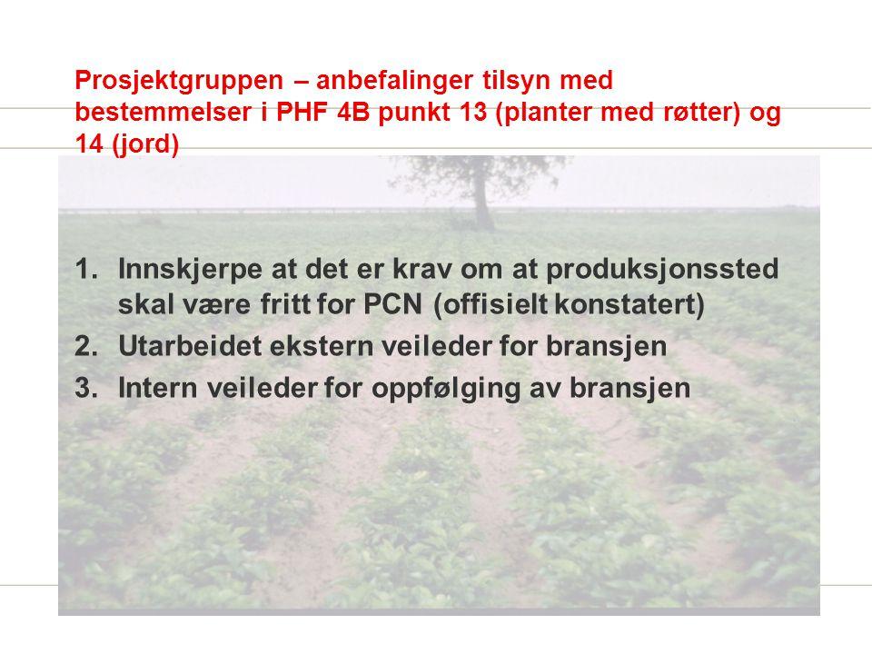 Prosjektgruppen – anbefalinger tilsyn med bestemmelser i PHF 4B punkt 13 (planter med røtter) og 14 (jord) 1.Innskjerpe at det er krav om at produksjonssted skal være fritt for PCN (offisielt konstatert) 2.Utarbeidet ekstern veileder for bransjen 3.Intern veileder for oppfølging av bransjen