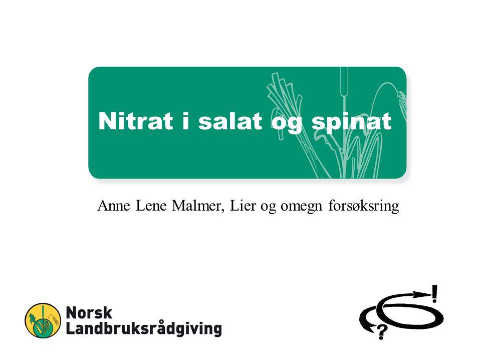 Nitrat i salat og spinat Anne Lene Malmer, Lier og omegn forsøksring