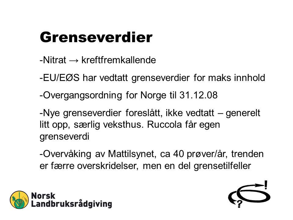 Grenseverdier -Nitrat → kreftfremkallende -EU/EØS har vedtatt grenseverdier for maks innhold -Overgangsordning for Norge til 31.12.08 -Nye grenseverdi