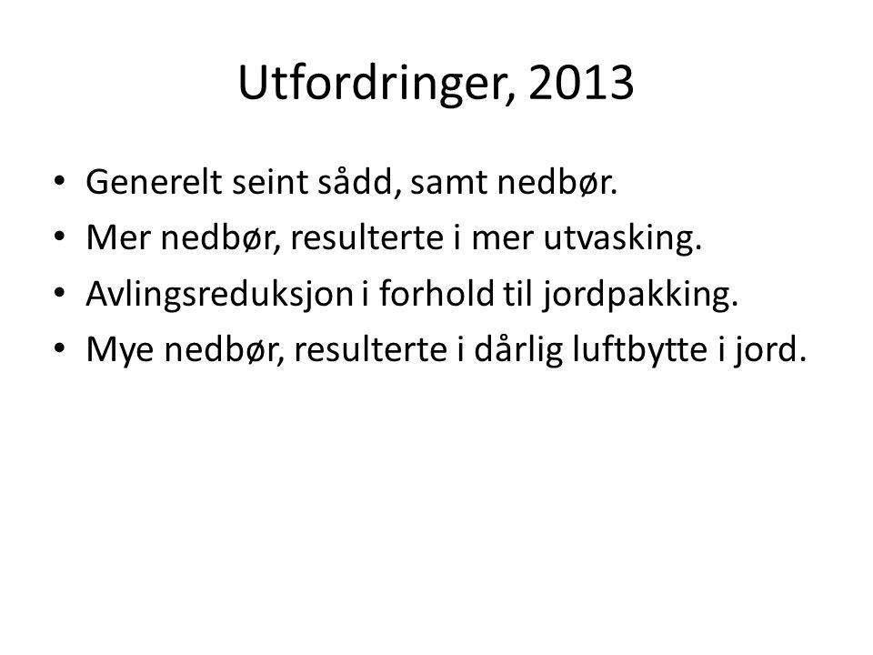 Utfordringer, 2013 Generelt seint sådd, samt nedbør.