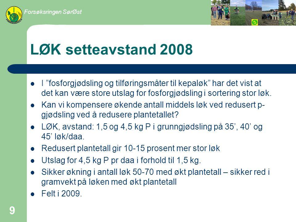 Frilandsagurk 2008 Kan en redusere P-gjødslinga til frilandsagurk uten at det går ut over avlinga.