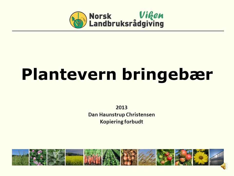 Plantevern bringebær 2013 Dan Haunstrup Christensen Kopiering forbudt