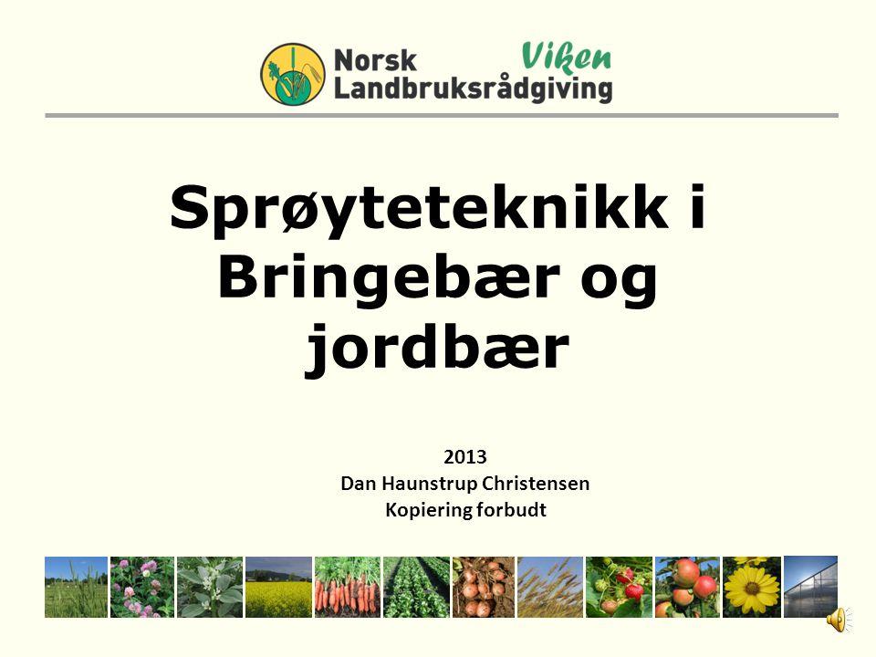 Sprøyteteknikk i Bringebær og jordbær 2013 Dan Haunstrup Christensen Kopiering forbudt