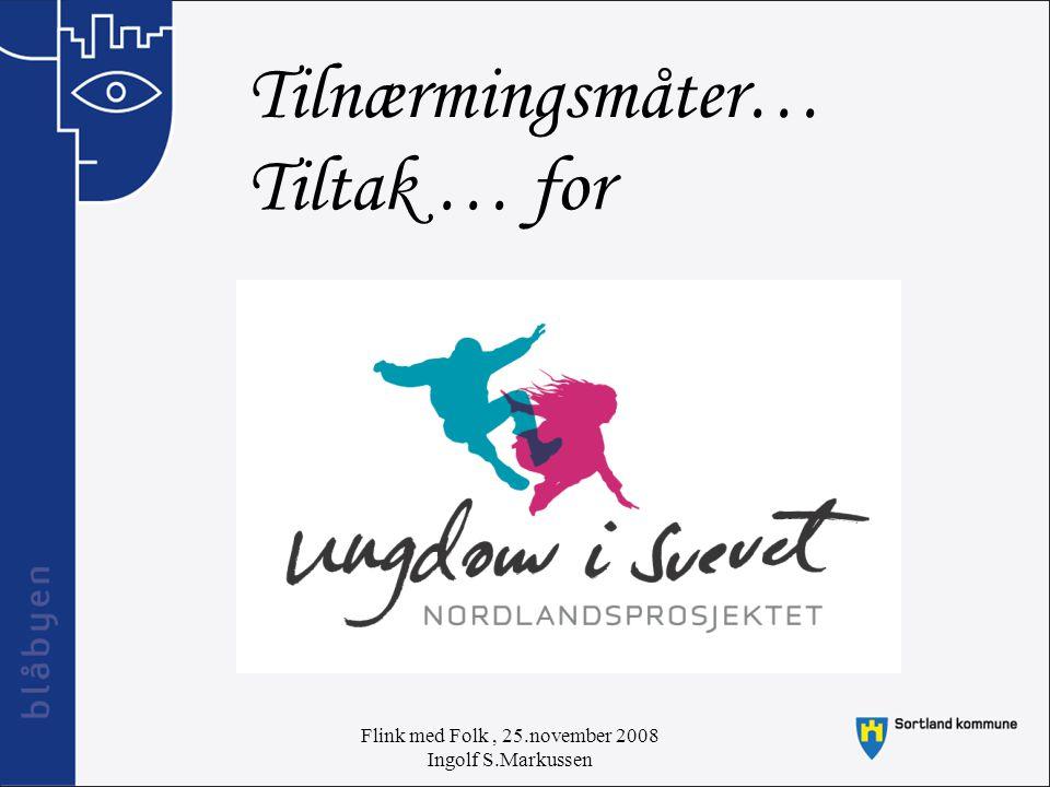 Flink med Folk, 25.november 2008 Ingolf S.Markussen Tilnærmingsmåter… Tiltak … for