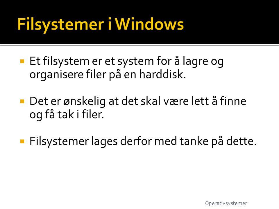  Et filsystem er et system for å lagre og organisere filer på en harddisk.  Det er ønskelig at det skal være lett å finne og få tak i filer.  Filsy