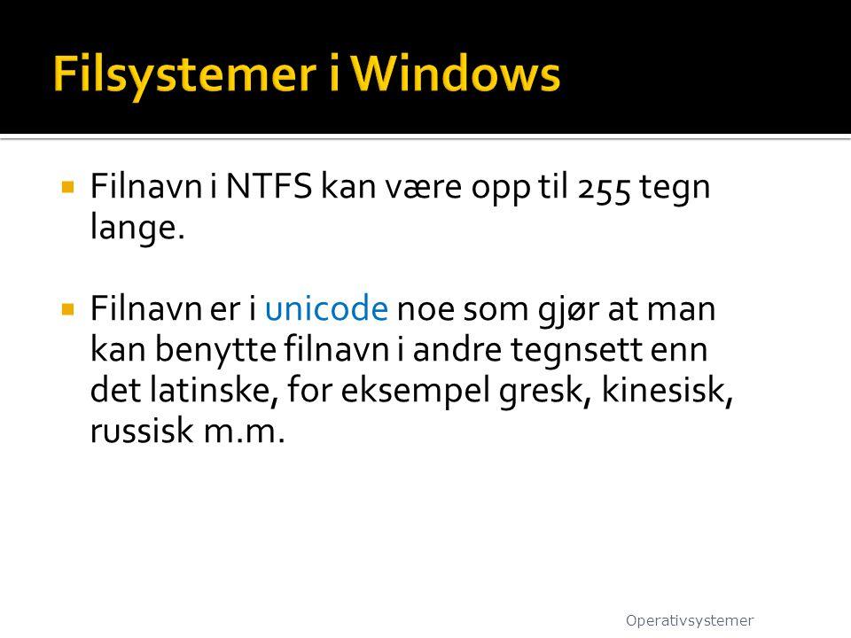  Filnavn i NTFS kan være opp til 255 tegn lange.  Filnavn er i unicode noe som gjør at man kan benytte filnavn i andre tegnsett enn det latinske, fo