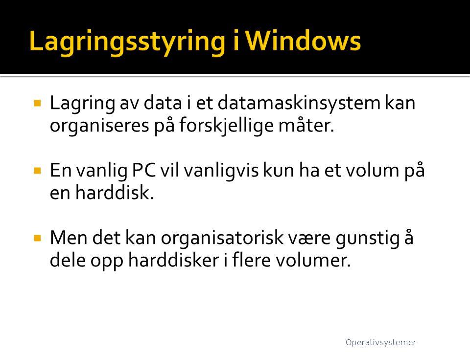  Lagring av data i et datamaskinsystem kan organiseres på forskjellige måter.  En vanlig PC vil vanligvis kun ha et volum på en harddisk.  Men det