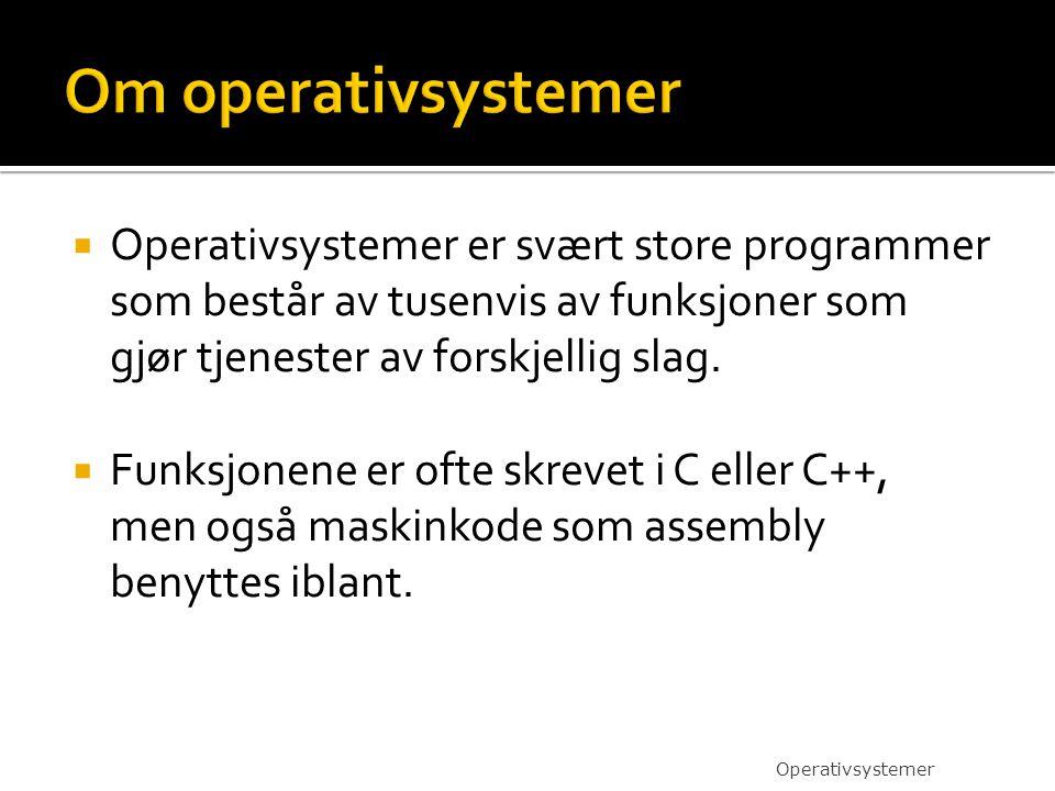  Operativsystemer er svært store programmer som består av tusenvis av funksjoner som gjør tjenester av forskjellig slag.  Funksjonene er ofte skreve