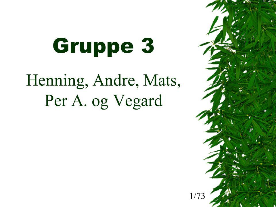 Gruppe 3 Henning, Andre, Mats, Per A. og Vegard 1/73