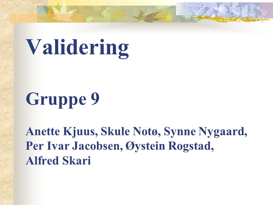 Validering Gruppe 9 Anette Kjuus, Skule Notø, Synne Nygaard, Per Ivar Jacobsen, Øystein Rogstad, Alfred Skari
