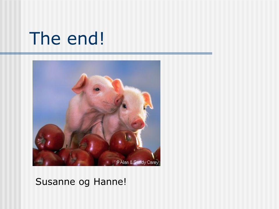 The end! Susanne og Hanne!