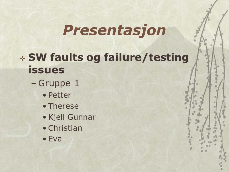 Presentasjon  SW faults og failure/testing issues –Gruppe 1 Petter Therese Kjell Gunnar Christian Eva