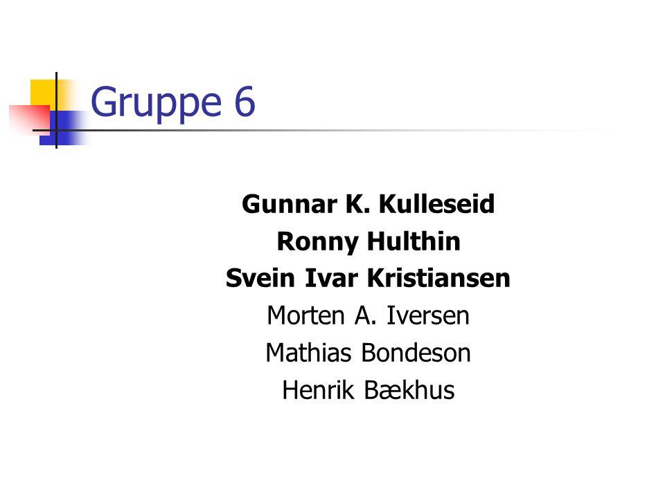 Gruppe 6 Gunnar K. Kulleseid Ronny Hulthin Svein Ivar Kristiansen Morten A. Iversen Mathias Bondeson Henrik Bækhus