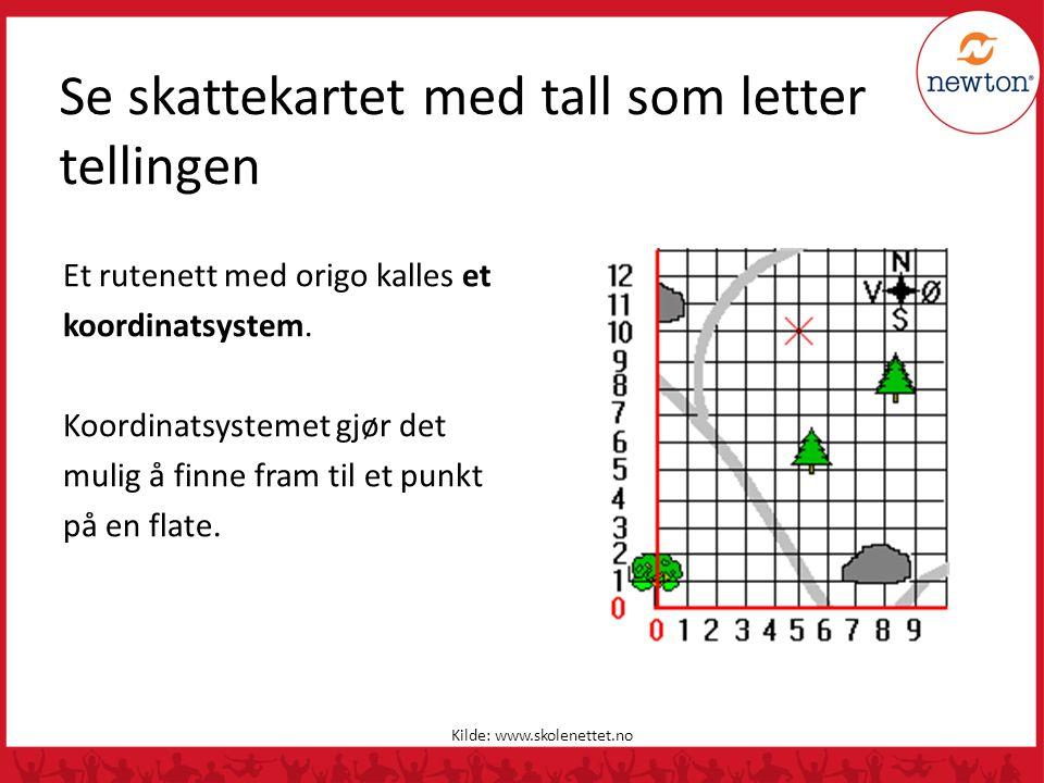 Se skattekartet med tall som letter tellingen Et rutenett med origo kalles et koordinatsystem. Koordinatsystemet gjør det mulig å finne fram til et pu