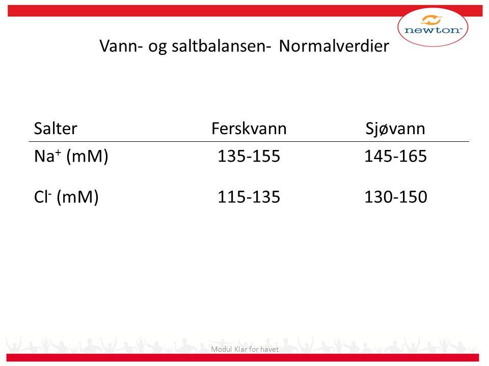 Vann- og saltbalansen- Normalverdier SalterFerskvannSjøvann Na + (mM)135-155145-165 Cl - (mM)115-135130-150 Modul Klar for havet