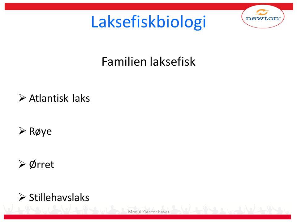 Laksefiskbiologi Familien laksefisk  Atlantisk laks  Røye  Ørret  Stillehavslaks