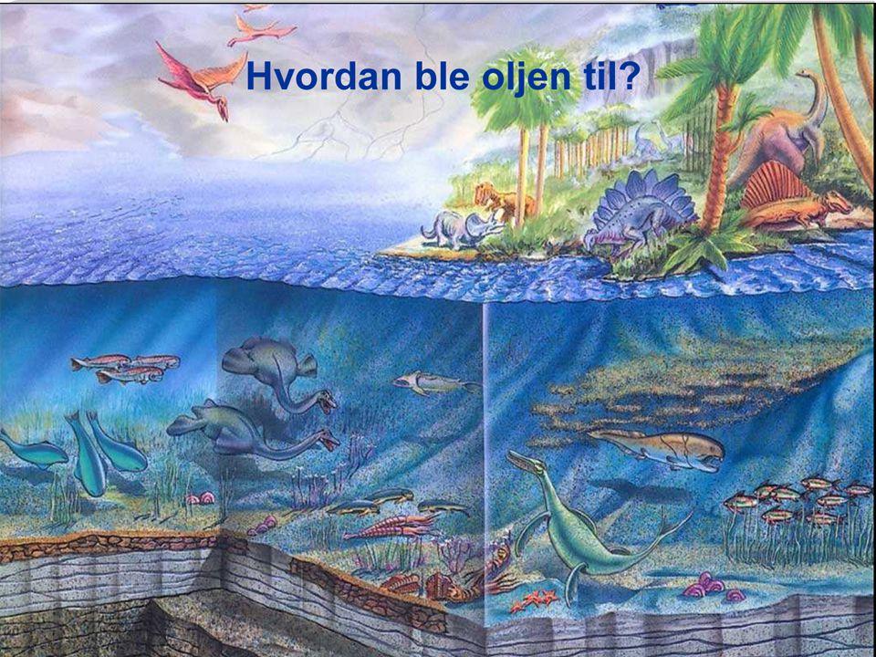 Olje og gass blir dannet i Nordsjøen: http://www.viten.no/vitenprogram/vis.html?prgid=uuid%3A01ADF27D-25F2-2E29-FB6C-000005B0A038&tid=1065534&grphttp://www.viten.no/vitenprogram/vis.html?prgid=uuid%3A01ADF27D-25F2-2E29-FB6C-000005B0A038&tid=1065534&grp= Forsking på sandstein Olje og gass blir dannet: http://www.viten.no/vitenprogram/vis.html?prgid=uuid%3A01ADF27D-25F2-2E29-FB6C-000005B0A038&tid=1065533&grphttp://www.viten.no/vitenprogram/vis.html?prgid=uuid%3A01ADF27D-25F2-2E29-FB6C-000005B0A038&tid=1065533&grp=