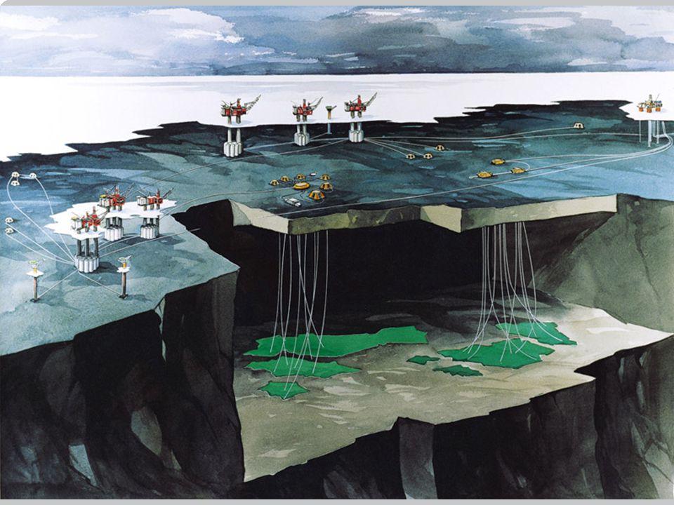 Kull: 41 % Olje: 6 % Gass: 20 % Til sammen utgjør fossile brensler 67 % av verdens totale produksjon av elektrisitet.