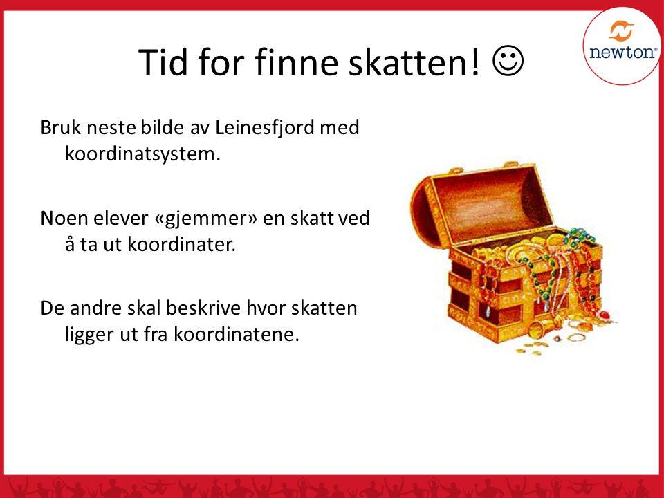 Tid for finne skatten! Bruk neste bilde av Leinesfjord med koordinatsystem. Noen elever «gjemmer» en skatt ved å ta ut koordinater. De andre skal besk